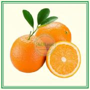 Апельсины (Эко)
